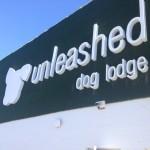 unleashed dog lodge